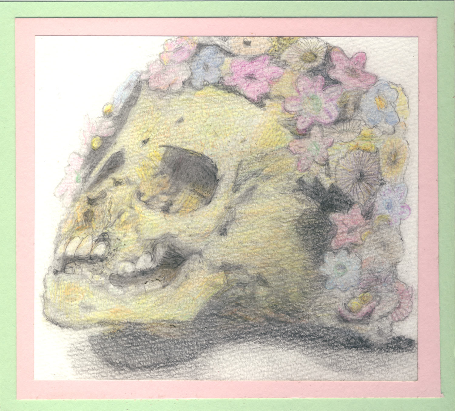 Skull with Flower Covering